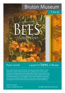 Bruton Museum Casespace - A quest for bees in Bhutan by Paula Carnell